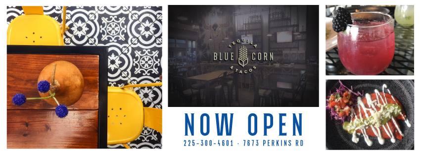 Blue Corn_ Logo Collage